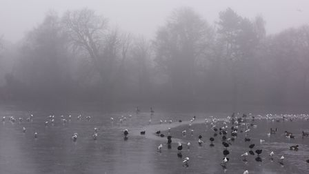 The fog in Wanstead this morning. Picture: Ken Mears