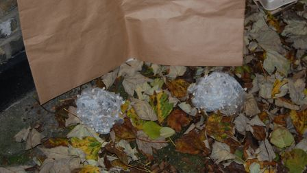 Drugs found at the Disraeli Road, Newham, property