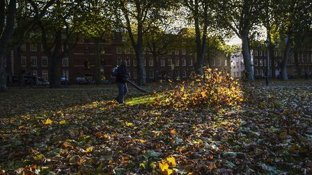 Fallen leaves can be dangerous to pedestrians when wet Picture: PA/Ben Birchall
