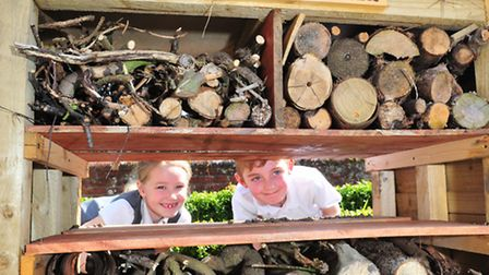 Youngsters from Somerleyton primary school enjoy the newly landscaped school garden.Jack and Ella-Ja