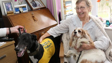 Pets ast therapy volunteers visiting Meadowbanks, Hall care home, in Upminster, Eunice Stuart, age