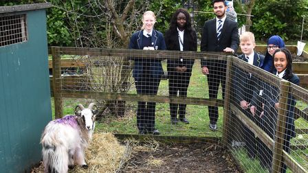 The school was commended for its extra curricular activities - including the school farm. Picture: K