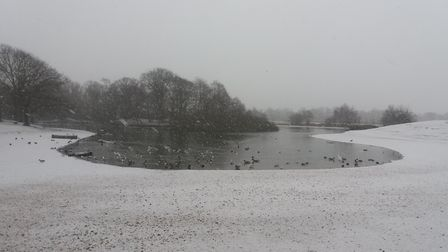 Picture by Ken Mears of the snow in Wanstead.