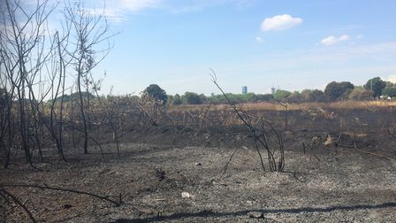 """The aftermath of the """"biggest ever"""" grass fire in London's history which broke out in Wanstead Flats"""