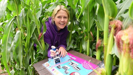 Southwold Maize Maze which has opened for business. Manager Bella Hall in the maze.Picture: James Ba