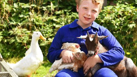 Callum Underdown rents his own plot of land is using his pocket money so he can care for injured and