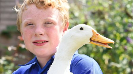 Callum Underdown cares for injured and neglected animals. Picture: James Bass