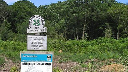 The Backwarden Nature Reserve is south of Danbury and together with Danbury Common, Lingwood Common