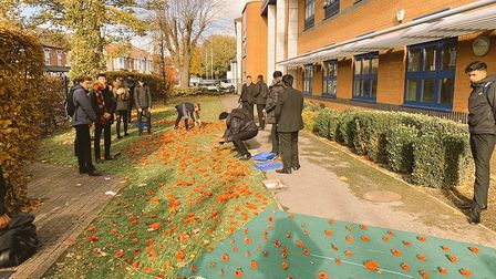 Students made more than 1,000 poppies. Picture: Paul Norris
