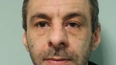 James Farina was jailed for four years and three months at Snaresbrook Crown Court on Friday, Octobe