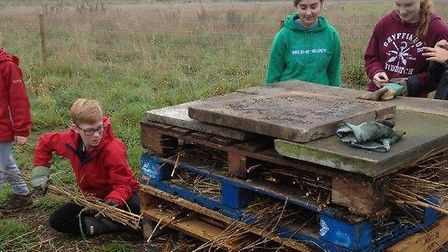 Young wardens at Carlton Marshes making a minibeast hotel