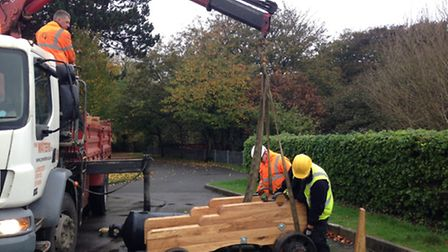 Refurbished cannons being installed in Belle Vue Gardens. Picture: George Ryan