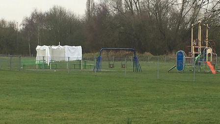 Police at the scene in Amy's Park this morning. Photo: Liam Coleman