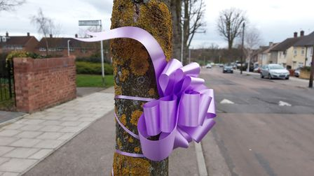 Bows and ribbons have been put up around Harold Hill in memory of Jodie Chesney. Photo: Ken Mears