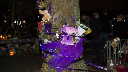 Purple tributes have been left all around the park. Photo: Mark Sepple