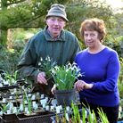 John and Brenda Foster have raised more than £40,000 for the National Garden Scheme over the past 38