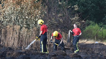 Firefighters spent four days tackling grass fires at Wanstead Flats last year. Picture: Ken Mears