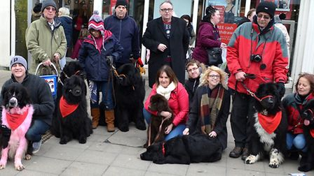 A Newfoundlands in Need appeal was held in Lowestoft town centre alll day on Saturday. Pictures: MIC