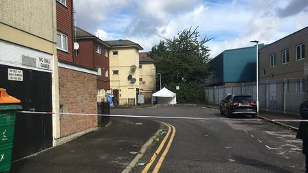 Michael Irving was stabbed to death in Byford Close, Stratford. Picture: Andrew Brookes