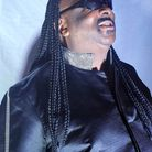 Shenton Dixon, who is the frontman of The Stevie Wonderful Show, will be performing at the Brookside