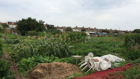 Allotment holders in Redbridge have had to give up their plots following a hike in fees. Picture: Ke