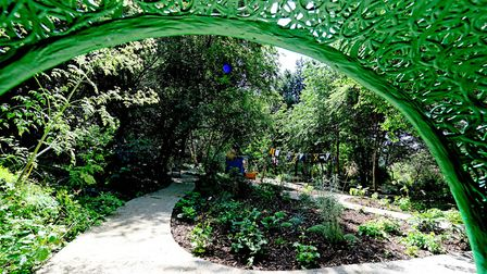 View from the apple chair, gifted from the Chelsea Flower Show 2019. Picture: Paul Webb