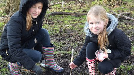 Children also enjoyed minibeast hunting as part of the session. Picture: Mick Howes