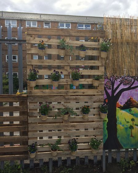 Plants on the wall of the Newham Ambulance Station wellbeing garden. Picture: Sophie Morton