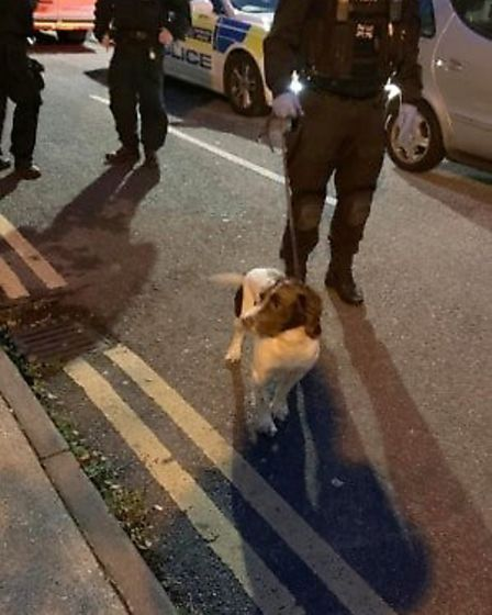 Sniffer dogs are brought to the scene on the Tiptree Estate. Picture: Met Police