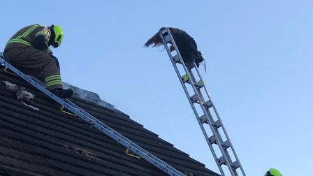 Firefighters were called to Epping Close, Romford at 8.28am to reports of a roof alight.
