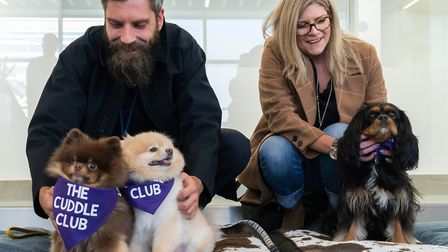Kobe, Cedric and Tilly were on hand to help alleviate stress at London City Airport. Picture: Andrew