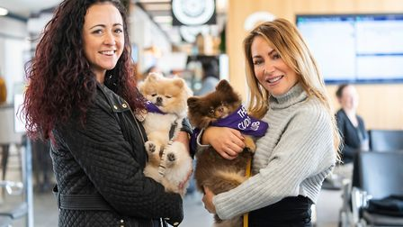 Pomeranian therapy dogs Cedric and Kobe put smiles on the faces of passengers and staff. Picture: An