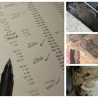 A void report gave the house in Hilldene Avenue a clean bill of health. Right: A rat found at the pr