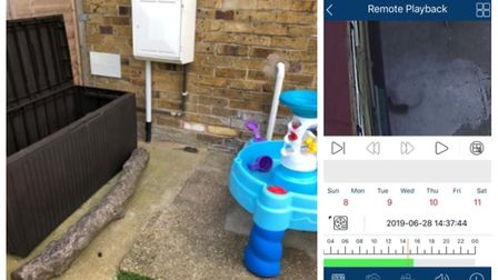 A rat crossing the back garden in Hilldene Avenue and, right, another is caught on CCTV. Pictures: S