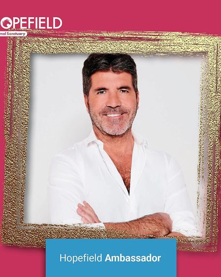 Simon Cowell has been announced as a new amabassador for Hopefield Animal Sanctuary in Brentwood.