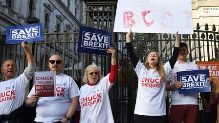 'Save Brexit' protesters outside Downing Street, London, ahead of a Cabinet meeting. Photograph: Ste