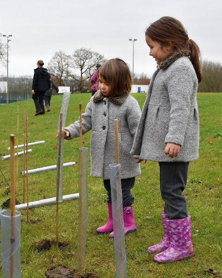 Drapers' Maylands Primary School in Harold Hill planting trees from the Woodland Trust. Picture: Nic