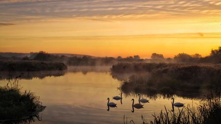 The 'EWT to a Tee' award was won by Matthew Chapman's serene image taken at Hornchurch Country Park