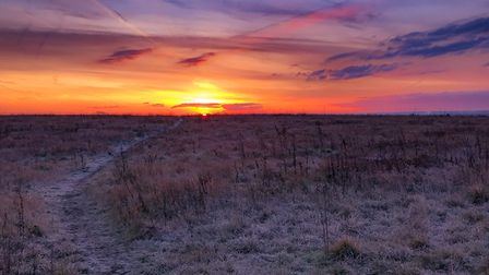 Another photograph of Hornchurch Country Park captured by Matt Chapman, who could now be named Essex