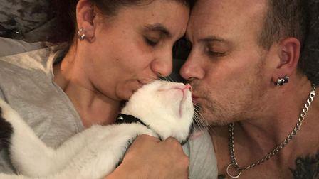 Miracle cat Jay re-united with owners after getting hit by a train near his home. Picture: PDSA