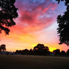 All this hot weather has made for some beautiful sunsets, like this one captured over Cottons Park b