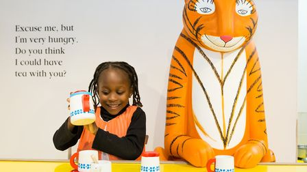 A young girl plays at the Discover Children's Story Centre. Picture: Sorcha Bridge