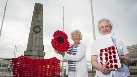 Zoiyar Cole (left) and Avril Rickarby (84) are aiming to raise more than £2000 for the Royal British