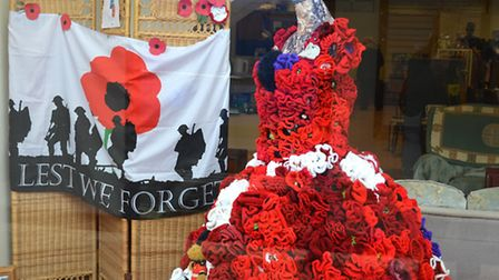 Poppy dress created. Picture: MICK HOWES