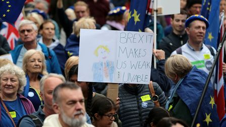 Supporters of Best for Britain and EU for Brum, during the 'Bin Brexit' rally Photo: PA
