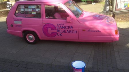 The Lauren Lou cancer appeals fund at a previous street collection in Beccles town centre. Picture: LAUREN LOU APPEAL