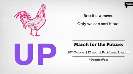New posters from the People's Vote campaign