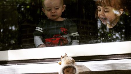 Lee Palmer's photo of his children watching a squirrel at Center Parcs.