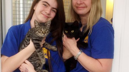 Mel and Gemma Seager. Picture: Cats Protection Anglia Coastal.
