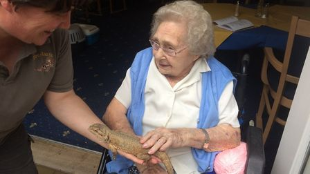 Staff and residents at Oaklands House residential home in Reydon enjoying a visit from Zootastic as